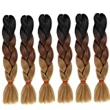 6 Packs Eunice Hair Jumbo Flechten Hair Extensions Colorful Kunsthaar Kanekalon Haar für Heimwerker Crochet Box Zöpfe Ombré-Braun 3 Tone Color 100 g/pcs 61 cm (Ombre brown)